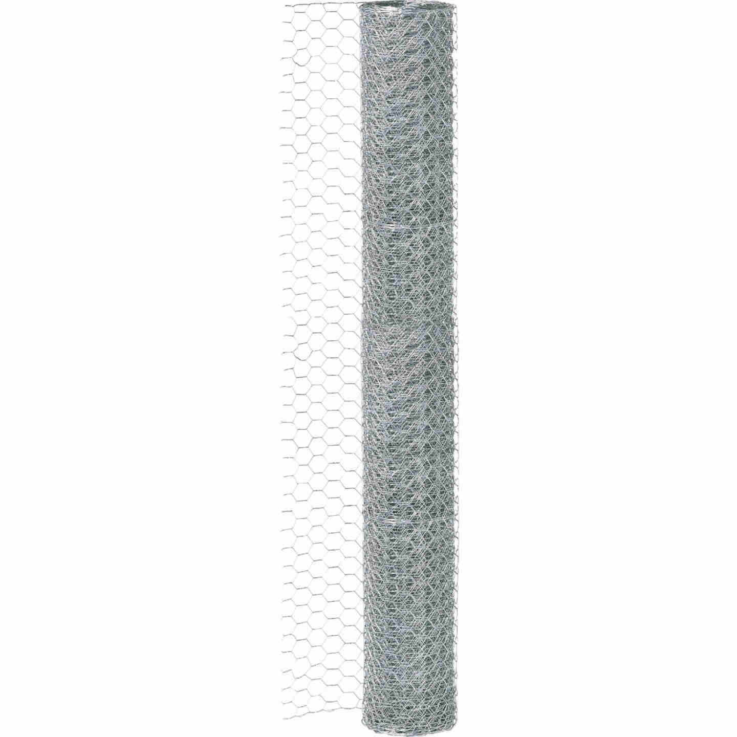 Do it 2 In. x 36 In. H. x 25 Ft. L. Hexagonal Wire Poultry Netting Image 2